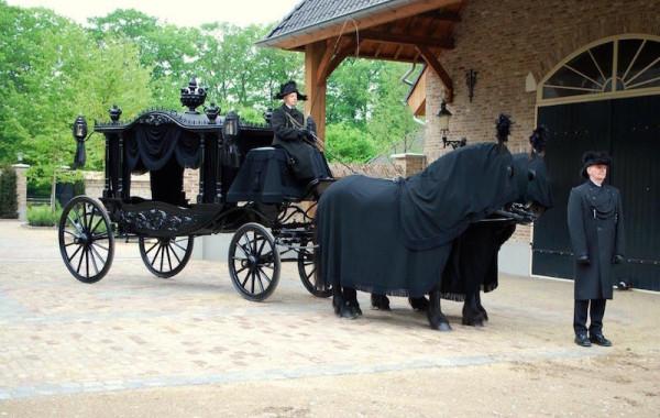 Koetstocht begrafenis aanspanning