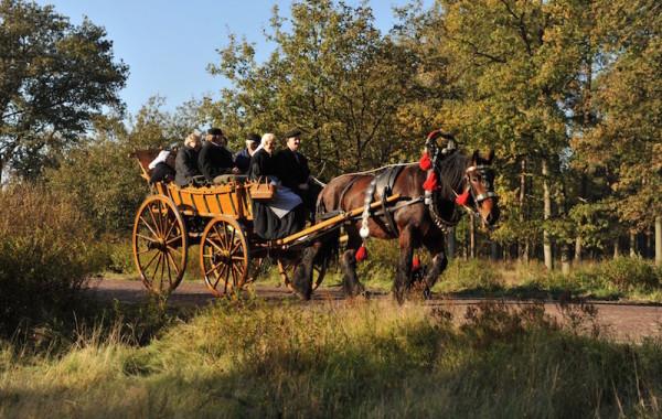 Luxe boerenwagen aanspanning
